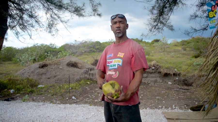 Jamaican coconut seller uses a machete to split a jelly coconut